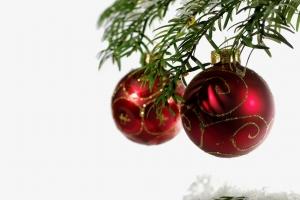 1409035_ornaments_on_tree
